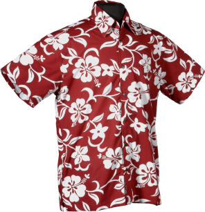388589b7 Classic Red Hibiscus Hawaiian Shirt